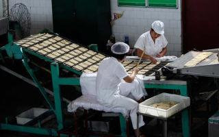 Производство макаронных изделий: анализ + оборудование + доход