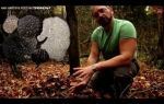 Выращивание гриба трюфеля: цена за 1 килограмм в россии
