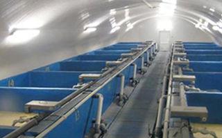 Оборудование для разведения раков в домашних условиях: цена устройств для выращивания раков