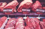Разведение бычков на мясо как бизнес в домашних условиях: таблица откорма