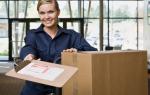 Курьерская доставка документов: актуальность + пошаговый бизнес-план