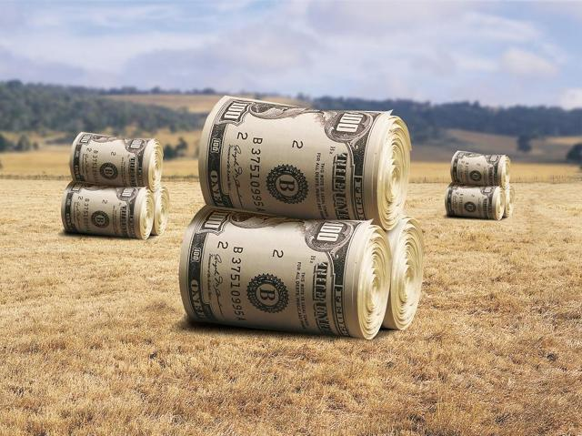 Бизнес идеи 2020 с минимальными вложениями в сельской местности