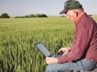 Бизнес в сельском хозяйстве с нуля: Идеи заработка