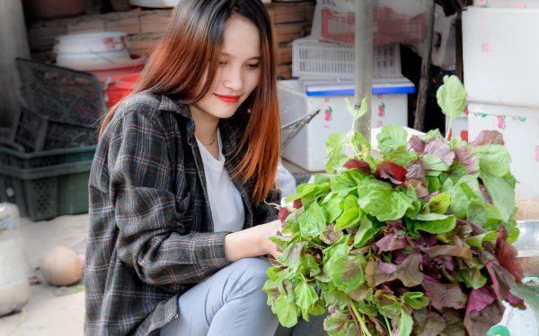 Как открыть свою ферму с нуля: Бизнес план