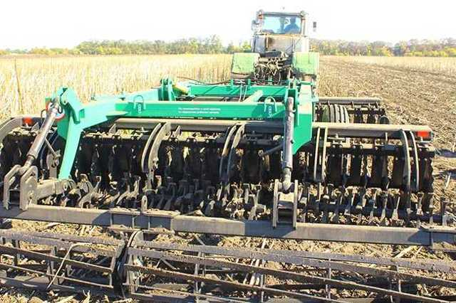Выращивание кукурузы как бизнес в открытом грунте в домашних условиях