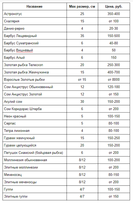 Аквариумный бизнес: расчёты с нуля