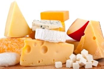 Производство сыра в домашних условиях: детальный план бизнеса