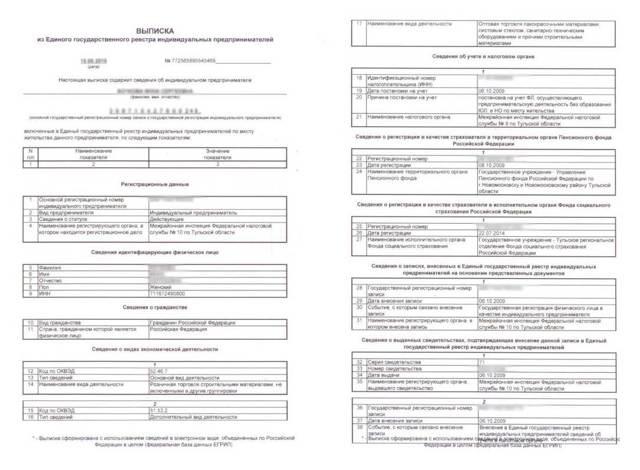 Как получить выписку из ЕГРИП: подробные шаги