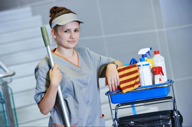 Что такое клининг и сколько денег можно заработать?