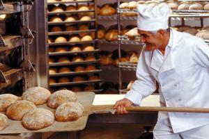 Производство хлеба: финансовый план, расчеты, окупаемость