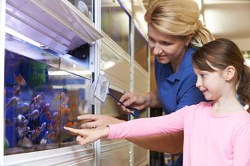 Как открыть зоомагазин: готовый план