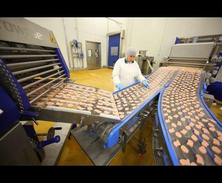 Производство полуфабрикатов: подробный финансовый план