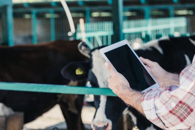Готовый бизнес план сельского хозяйства: инструкция по составлению + лучшие идеи