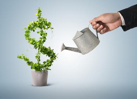 Где взять деньги на открытие бизнеса?