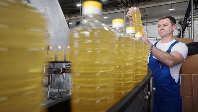 Производство подсолнечного масла: с чего начать бизнес?