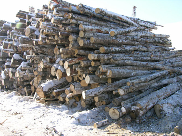 Как делают древесный уголь: особенности производства
